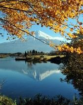 英語や中国語で日本の魅力を海外に発信するインバウンドメディア27選の画像